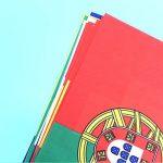 drapeau indicateur de vent TOP 8 image 3 produit