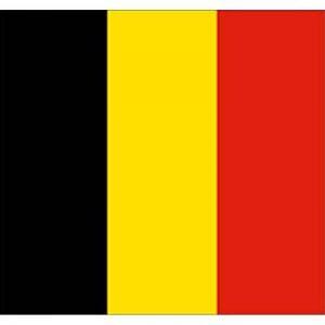 drapeau jaune et noir TOP 0 image 0 produit