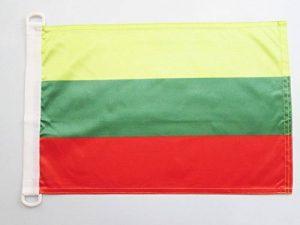 drapeau lituanie TOP 3 image 0 produit