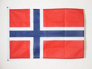 DRAPEAU NORVÈGE 90x60cm - DRAPEAU NORVÉGIEN 60 x 90 cm Spécial Extérieur - DRAPEAUX - AZ FLAG de la marque AZ FLAG image 0 produit