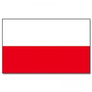 drapeau pologne TOP 1 image 0 produit