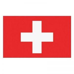 drapeau suisse TOP 0 image 0 produit