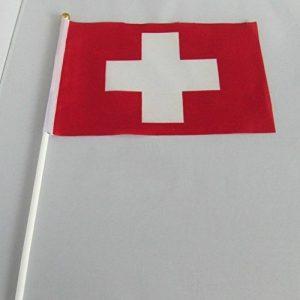 drapeau suisse TOP 9 image 0 produit