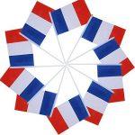 drapeau tricolore TOP 7 image 2 produit