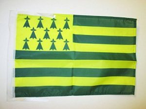 drapeau vert TOP 1 image 0 produit