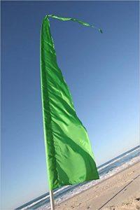 drapeau vert TOP 9 image 0 produit