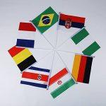 Drapeaux Stick, Wingbind Drapeaux tenus à la main sur bâton FIFA World Cup Russie 2018 Fan Club Party Souvenior avec Round Top-20 Pcs de la marque Wingbind image 2 produit