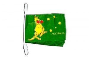 drisse drapeau TOP 13 image 0 produit