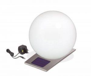 Esotec Boule De Lumière Solaire Jardin Trendy 300 Mm 106042 Led Inox Eclairage Extérieur de la marque Esotec image 0 produit