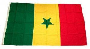 FahnenMax drapeau du sénégal 90 x 150 cm de la marque FahnenMax® image 0 produit