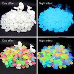Fastar Lot de 100/ 200 galets fluorescents pour décorer un jardin, un aquarium, un pot de fleur de la marque Fastar image 1 produit