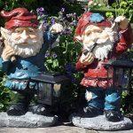 FHFY Garden Seth le Nain de jardin avec lanterne solaire, jardin en Statue d'une de la marque FHFY Garden image 2 produit