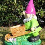 Figurine Nain de jardin Lutin avec brouette Décoration Pot de Nain de jardin de la marque colourliving image 4 produit