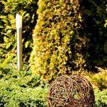 Floranica Boule décorative - au bois de saule Boule en osier Boule en sarment de vigne Décoration de jardin en 5 tailles différentes, Diamètre:30cm de la marque Floranica image 2 produit