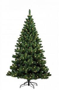 Forever Green 958936 auburn sapin de noël artificiel hauteur : 210 x 146 cm, d pVC ampoules lED et 250 pointes, 866 et support vert de la marque Forever Green image 0 produit