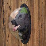 FurryFriends fenêtre pour animal domestique–Acrylique Chien fenêtre/Judas pour porte ou portail de la marque FurryFriends image 2 produit