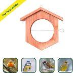 Gardigo Mangeoire à oiseaux en bois | Idéale pour pommes et boules de graisse - 18,5 x 18 x 4 cm de la marque Gardigo image 3 produit