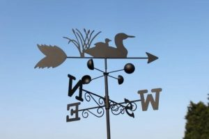 Girouette canards en acier avec mât et fixation murale de la marque Olive Grove image 0 produit