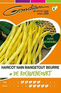 Gondian 65405 CP X ou CP 1 Semences Haricot Nain Mgt Beurre de Rocquencourt Jaune 1 x 10,5 x 16,2 cm de la marque Gondian image 0 produit