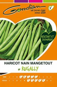 Gondian 68605 CP Y ou CP 3 Semences Haricot Nain Mangetout Rugally Vert 1 x 10,5 x 16,2 cm de la marque Gondian image 0 produit