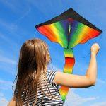 Grand cerf-volant, jeu de plein air – prêt à voler – parfait pour les enfants, vole bien – léger et solide – 100% satisfait ou remboursé de la marque aGreatLife image 3 produit