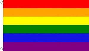 Grande. 8m x 5m (240x 150cm) Mars arc-en-ciel Gay Pride Couleur Multicolore Matière 100% polyester drapeau bannière Idéal pour Pub Club école Festival Business Party Décoration de la marque UKFlagShop image 0 produit