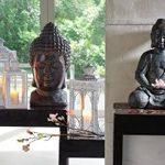 greemotion 124228Tête Bouddha décorative, 27x 25x 49cm, noir de la marque greemotion image 1 produit