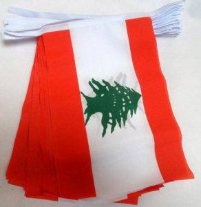 GUIRLANDE 12 mètres 20 DRAPEAUX LIBAN 45x30 cm - DRAPEAU LIBANAIS 30 x 45 cm - AZ FLAG de la marque AZ FLAG image 0 produit