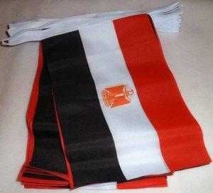 GUIRLANDE 6 mètres 20 DRAPEAUX EGYPTE 21x15 cm - DRAPEAU EGYPTIEN 15 x 21 cm - AZ FLAG de la marque AZ FLAG image 0 produit