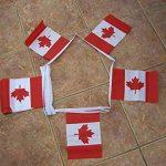 GUIRLANDE 6 mètres 20 DRAPEAUX CANADA 21x15 cm - DRAPEAU CANADIEN 15 x 21 cm - AZ FLAG de la marque AZ FLAG image 1 produit