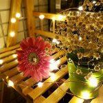 Guirlande Lumineuses à Pile 2Pack Éclairage Chaîne 50 LED String Lights batterie exploité Waterproof en fil de cuivre avec télécommande pour DIY Wedding Party Dinner Indoor Décoration extéri de la marque Kenor image 3 produit