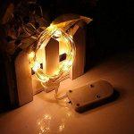 Guirlandes Lumineuse Étanche Cuivre Fil 2m 20-LEDs Piles Incluses décoration Noël mariage anniversaire - 4 Couleurs Set de la marque Folowish image 2 produit