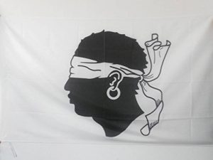 hampe pour drapeau TOP 1 image 0 produit