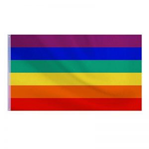 Hotop Nouveau Drapeau Arc-En-Ciel Gay Pride Rainbow Drapeau du Festival Bannière Carnival, 5 x 3 Ft/150 x 90 cm de la marque Hotop image 0 produit