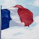 inShang Drapeau, Français Drapeau 90*60CM Drapeau, 150*90CM Drapeau de la marque inShang image 3 produit