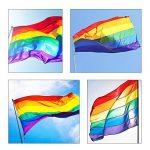Jazzka Drapeau Arc-en-ciel Rainbow Flag Pride Gay Lesbienne LGBT Parade Paix Celebration Polyester 1,5 x 0,9 m/ 5 x 3 ft 2 Pièces de la marque Jazzka image 4 produit