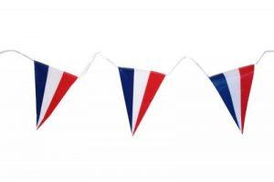 le drapeau français TOP 1 image 0 produit