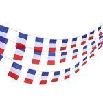le drapeau français TOP 2 image 1 produit