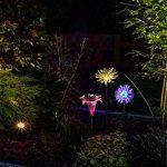 LED Couleur Changeante Solar Stake Lights Extérieure, Solar Light LED Décor De Jardin Statues, Patio Lights LED Extérieure Multicolore Changeant LED Lights, [Set De 3] de la marque JFJL image 1 produit