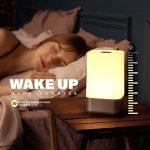 Leto TG Réveil lumière Réveil avec Simulation de Lever de soleil–lampe contrôle tactile pour adultes et enfants lumière de nuit pour–Digital Horloge lampe de chevet avec 7couleurs/5Sons naturels/3luminosité/lampe de la marque LETO TG image 1 produit
