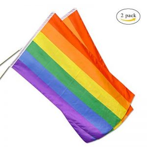 lgbt drapeau TOP 6 image 0 produit