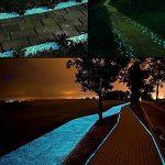Lueur dans les galets sombres 100 PCS Pierres décoratives Pavés lumineux pour Aquarium Fish Tank Gravel Décorations Voies de passage et décor de jardin (Bleu) de la marque Jump Fox image 1 produit