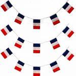 Mondial 2018 - Kit du supporteur de la FRANCE : 1 Echarpe de 130 x 15 cm avec franges + 1 Grand Drapeau en tissu de 140 x 90 cm + 1 banderole de 4 mètres composée de 15 drapeaux de 14 x 20 cm avec attaches à chaque extrémité de la marque Equilibre et Aven image 2 produit