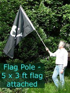 mât de drapeau télescopique TOP 3 image 0 produit