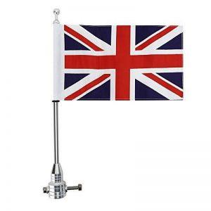mât porte drapeau TOP 8 image 0 produit
