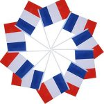 mât pour drapeau français TOP 7 image 2 produit