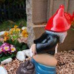 nain de jardin allemand TOP 9 image 2 produit