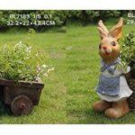 nain de jardin avec brouette TOP 2 image 1 produit