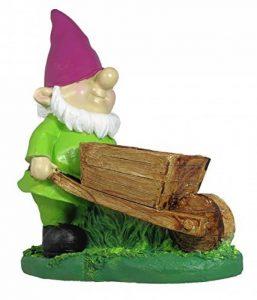 nain de jardin avec brouette TOP 5 image 0 produit