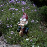 nain de jardin lumineux TOP 11 image 2 produit